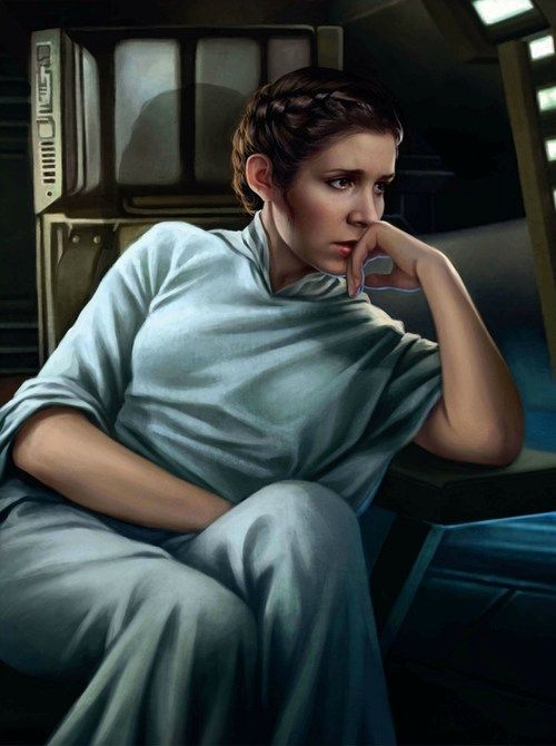51cd4d55f2e46ea1031283fb30a98afb--leia-star-wars-star-wars-art